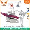 [لوور بريس] أسنانيّة وحدة /Dental وحدة مصنع/أسنانيّة وحدة ممونات