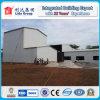 Estructura de acero del palmo largo del bajo costo