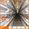 As aves domésticas Turn-Key mergulham o equipamento de exploração agrícola da fábrica com construção da vertente do aço