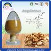Polvere dell'estratto di Membranaceus dell'astragalo per la sanità