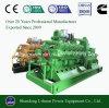 Jogo de gerador Genset da potência do gás da gasificação da biomassa 600kw
