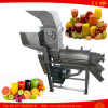1500kg extracteur de jus de fruits Apple Lemon Ginger oignon centrifugeuse Orange