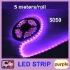 Der 5050 LED-Streifen 5 Meter das 300 LED-Purpur-Licht