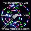 분홍색 청록색 Pnbg-3CS 3 색깔 번쩍이는 LED (YB-3120B4PNBG-ZM)