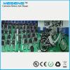 LiFePO4 E Träger-Batterie-Fachmann-Hersteller