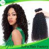 Человеческие волосы нового оптового Afro цены по прейскуранту завода-изготовителя естественного Kinky