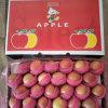 Neue 138-198 Größe Plastik geeinsackter roter FUJI Apple für Bangladesh