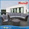 PEの藤の庭の家具の部門別のソファーセット