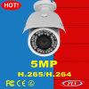 Nouvelle caméra de sécurité d'IP de la vision nocturne 5MP de balle