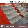 Bandes de roulement d'escalier intérieures/extérieures en pierre modernes avec la norme de SGS/CE