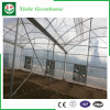 농업 겹켜 플라스틱 온실