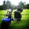 Motorino elettrico adulto senza spazzola di alta qualità 1000W 62V/12ah, motociclo elettrico del E-Motorino delle 2 rotelle