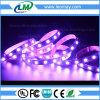 Il colore cambiante il RGB LED mette a nudo SMD5054 60LEDs/m con CE