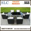 Elegante conjunto de mesa de vime/ moderno mobiliário de exterior/2013 Mobiliário de exterior (SC-B8894)