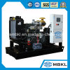 Générateur diesel 75kw/94kVA de Weichai de petite marque chinoise de tension de prix usine