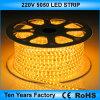 Il migliore prezzo 100m/Roll impermeabilizza l'indicatore luminoso di striscia del LED 220V