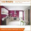 Einfacher Entwurfs-Melamin-Vorstand-moderner Küche-Schrank