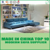 Sofás seccionales de los muebles de cuero modernos americanos de la sala de estar