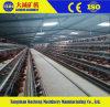 가금 농기구는 프레임 층 닭 감금소 또는 가금 또는 닭 장비 감금한다