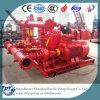 Dieselmotor u. elektrische Motor&Jockey Feuer-Pumpe
