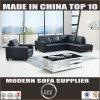 現代的な設計されていた家具の革ソファー