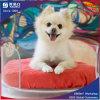 Cama de acrílico de cama de acrílico para o carrinho de canino