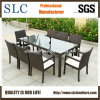 Новая Wicker мебель/синтетическая Wicker мебель (SC-B6023-B)