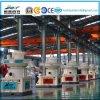 Линия продукция таблетки из горючег биомассы поставщика Китая для деревянной лепешки