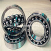 Doppelter Row Selbst-Aligning Ball Bearings in Competitive Price