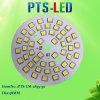 50W LEIDENE van uitstekende kwaliteit van PCB van gelijkstroom Module met Hoge Ctt