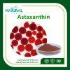 Astaxanthin Powder CAS: 472-61-7