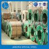 2b acabó la bobina del acero inoxidable por estándar de AISI 304