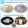 99% de alta pureza esteroide Deca Durabolin polvo Decanoato de nandrolona para el crecimiento muscular