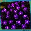 Indicatore luminoso multicolore della stringa di cerimonia nuziale 2016/natale/fiore di festival LED
