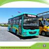 Rhd/LHD Ecomonic 7.3メートルおよび信頼できるディーゼル都市バス