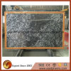 Popular superiore Marble Slab per Paving Slab