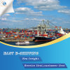 Internationales Ozean-Verschiffen von Shenzhen nach Südamerika
