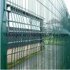 Rete fissa rivestita della rete metallica del paladino Fencing/PVC/rete fissa del ferro