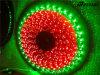 L'alta qualità indicatori luminosi di striscia da 12 volt LED impermeabilizza l'insieme di 5050 RGB LED
