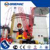 Grues hydrauliques de grue de chenille de Sany 80ton Scc800c à vendre