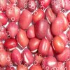 Feijão vermelho pequeno da colheita 2013 nova com alta qualidade (feijões) de Azuki (JD08)