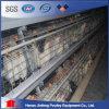 Автоматическая клетка животного клетки оборудования/птицы цыплятины клетки цыпленка слоя