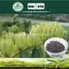 Il carbonio dell'acido pirolegnoso di Kingeta ha basato il fertilizzante composto NPK 22-7-11