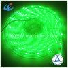 SMD3528 impermeabilizzano l'illuminazione della parete del nastro del nastro RGB/LED di illuminazione del LED