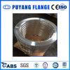 Bride en aluminium de haute qualité de boucle de plaque (PY0129)