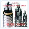 Câble blindé auto-bloqueur d'alliage d'aluminium