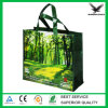 2016 BOPP Matte and Glossy Laminated PP Woven Bag