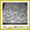Grey Polished Spray White Granite Slab pour Wall/Floor (YQC)