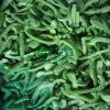 IQF Miced légumes de Frozen Pepper Dices / tranches