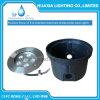 12V impermeabilizan la lámpara al aire libre ligera subacuática ahuecada LED del paisaje